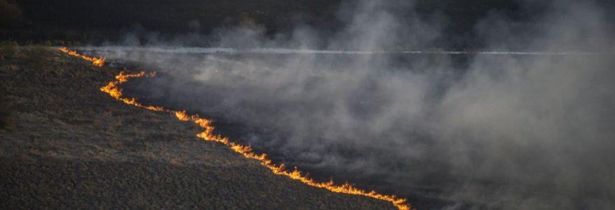 Зранку 3 квітня рятувальники загасили пожежу в Чорнобильській зоні