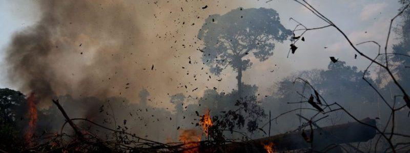 В бразильській Амазонії пожежі та пандемія стали згубною сумішшю